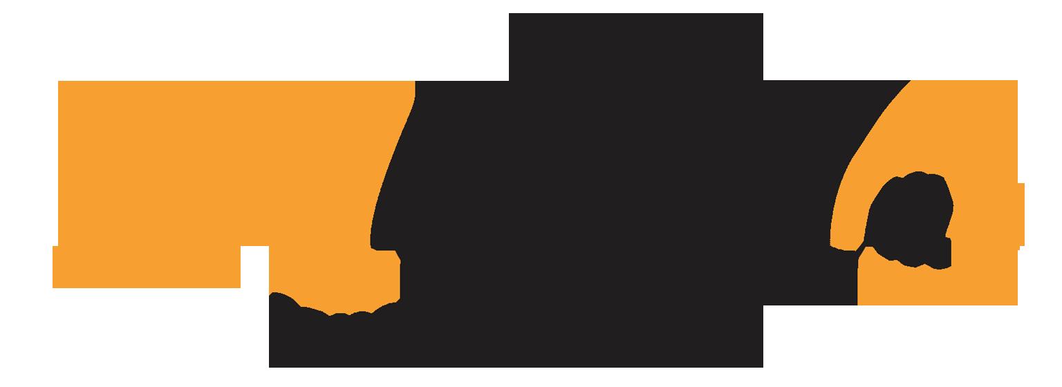 logo-metamb